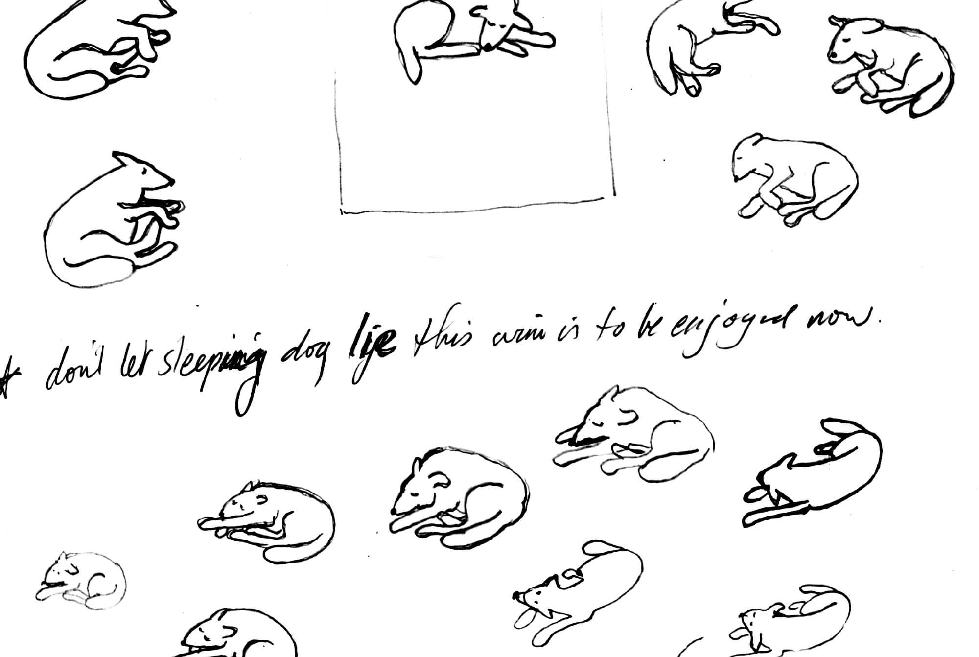 Dreamingdog_sketch