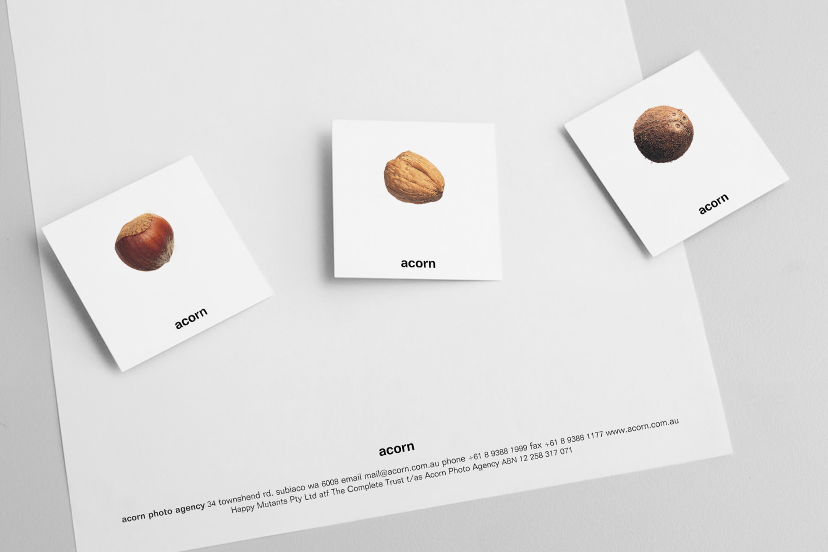 acorn_3