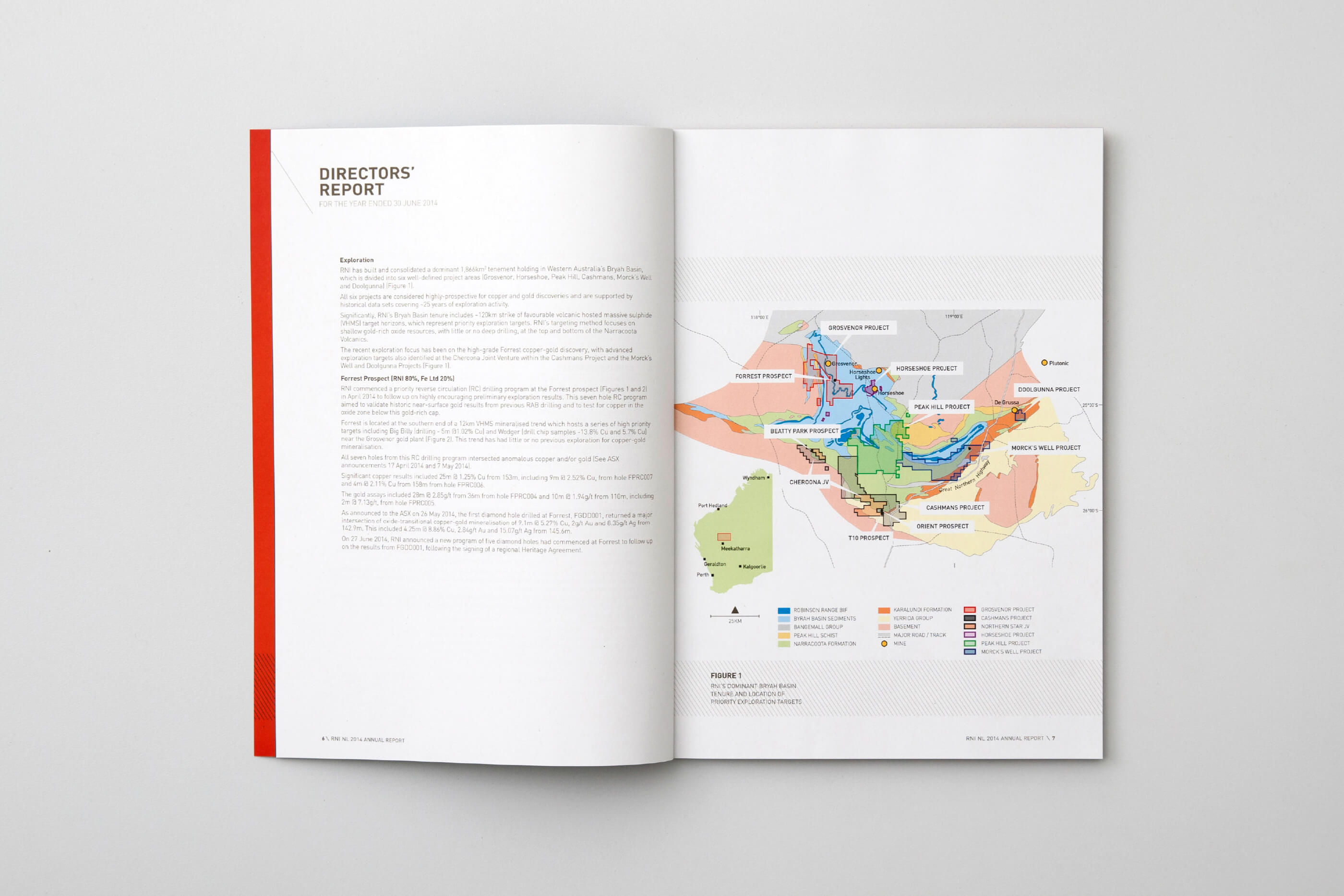 rni_annual_report_7